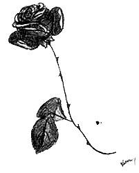 Flor - dibujo de Ana Maria
