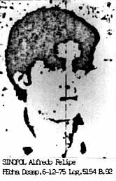 Alfredo Felipe Sinopoli